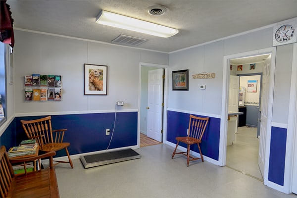 Weighting Station at Blue Ridge Animal Hospital