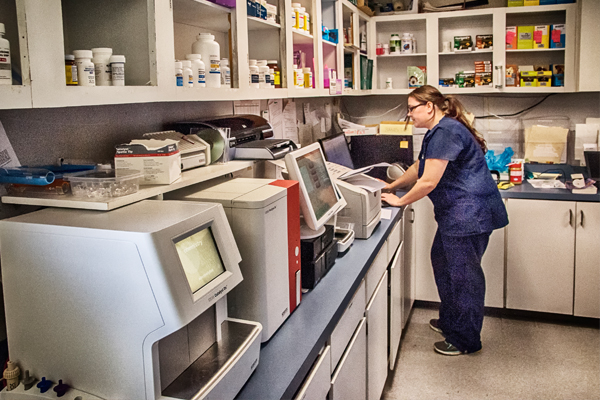 Laboratory at Blue Ridge Animal Hospital